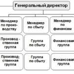 Структура управления бизнесом | Организационная структура управления