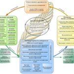 Бизнес процессы системы менеджмента качества (СМК)